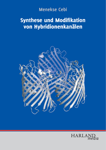 Synthese und Modifikation von Hybridionenkanälen